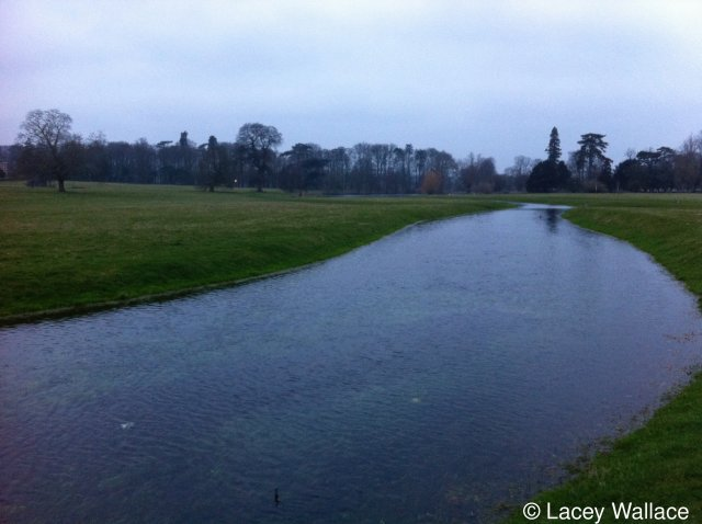 The Nailbourne in winter flow